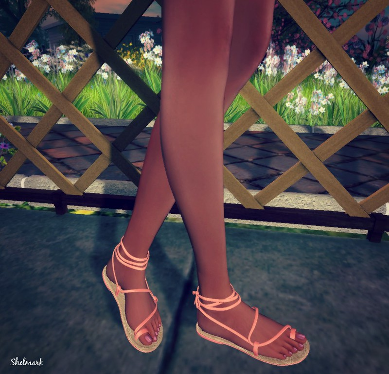 Blog_BBH_Slipper