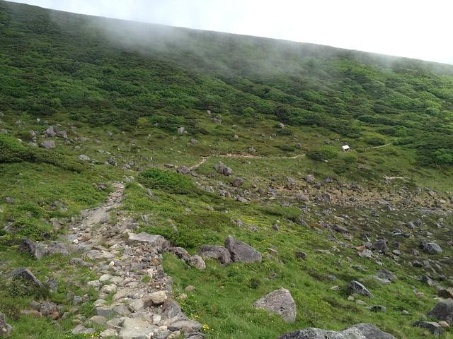 白山 お池めぐり 登山道