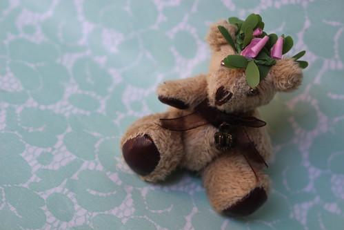 Kleine bear