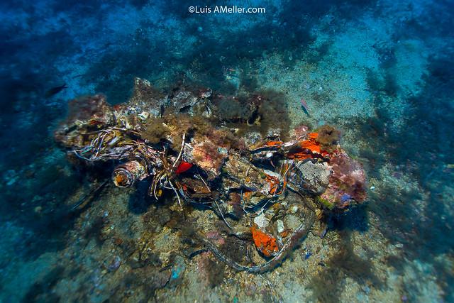 Luis Ameller Santa Clara Wreck menorca