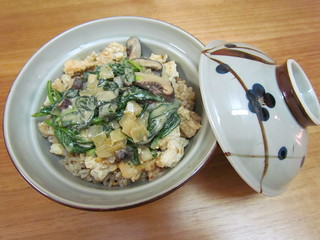 Sesame-Spinach Donburi
