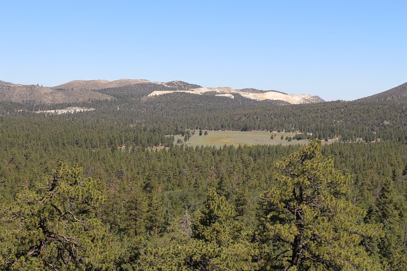 The meadow in Holcomb Valley and the cement strip mine just beyond it