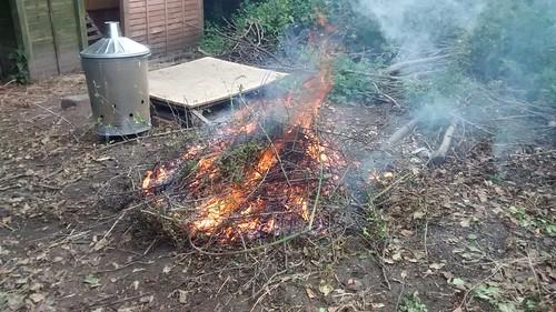 bonfire July 16