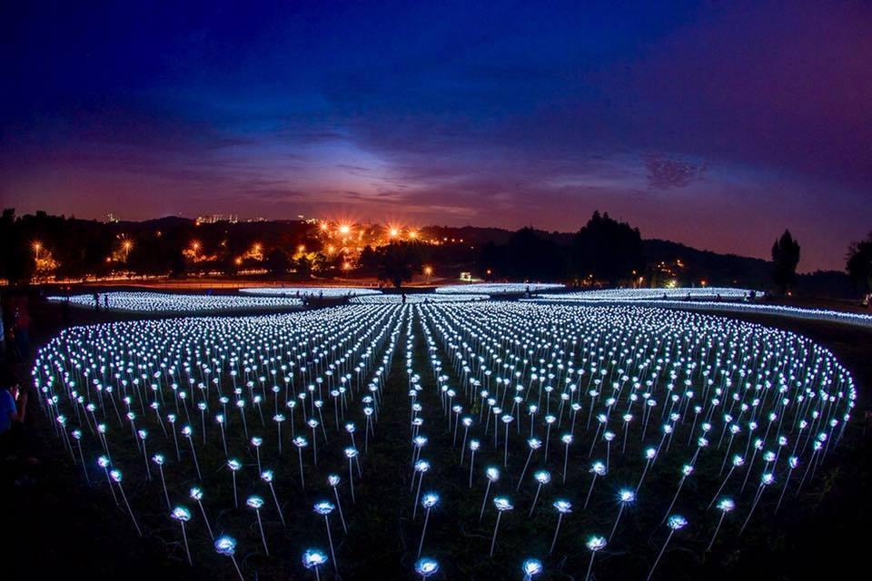 Light Sensation Serdang MAEPS Malaysia