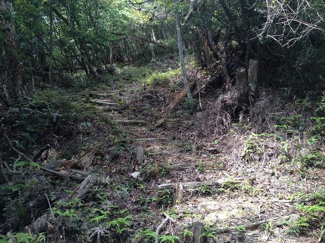 不破の滝 展望台 林間歩道