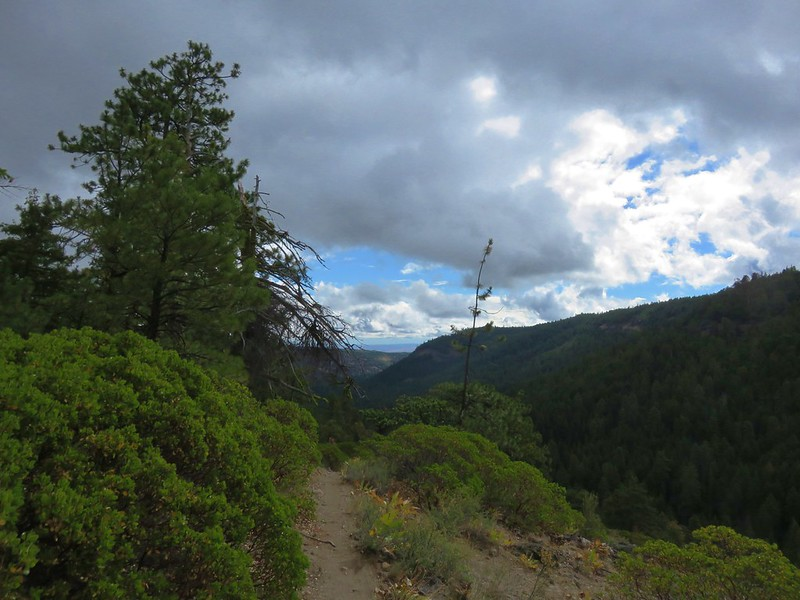 Cedar Creek Trail looking east