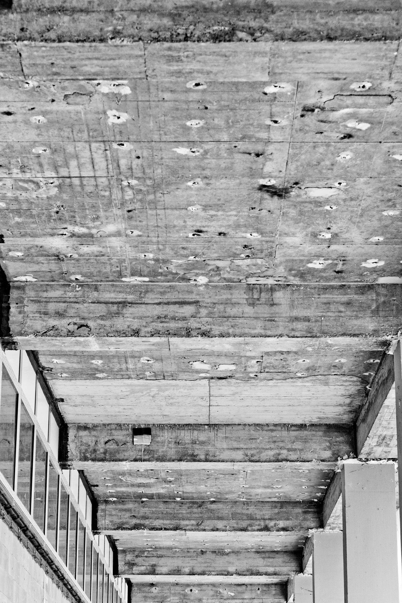 concrete structur // kulturpalast dresden