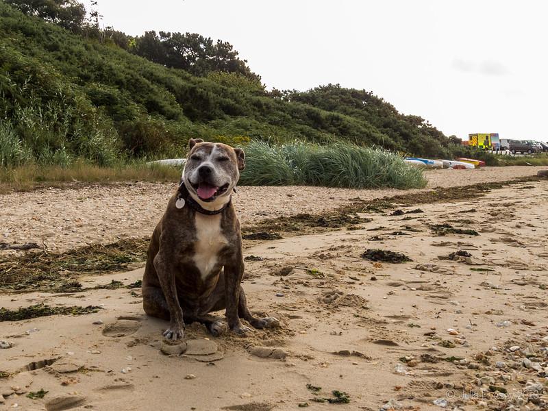 Jez sitting on the beach