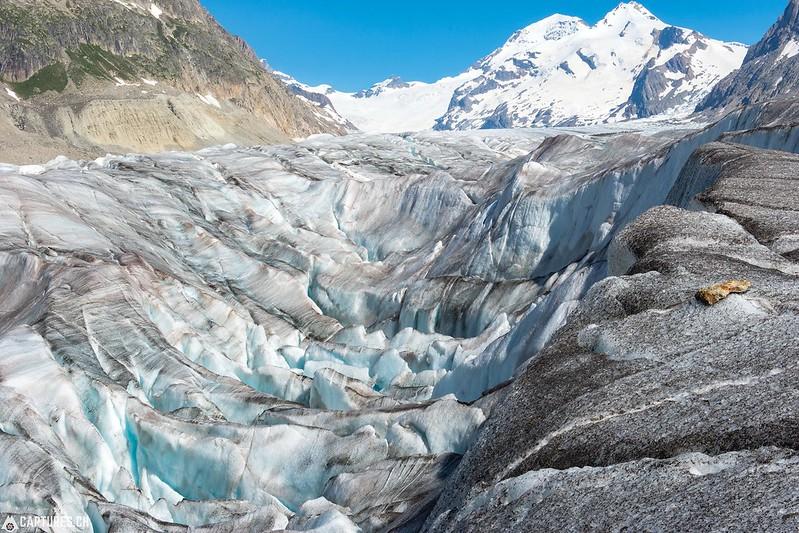 Ice 4 - Aletsch