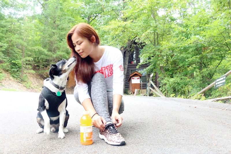 glamping-cabin-louis-beagle-dog-21