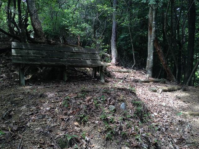 不破の滝 展望台 林間歩道 ベンチ