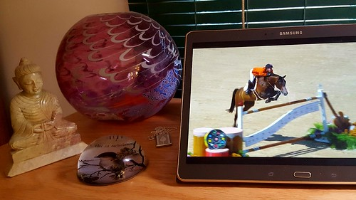 Watching equestrian jumping on my tablet at my desk
