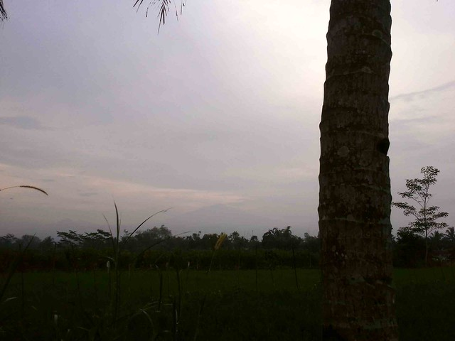 Mt Merapi from Homestay