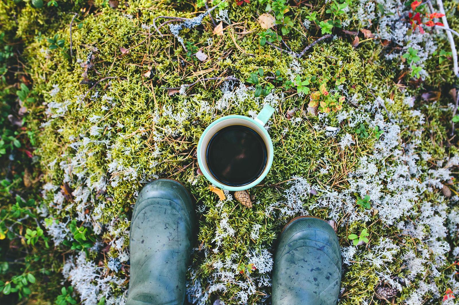 Kaffe i skogen - Evelinas Ekologiska
