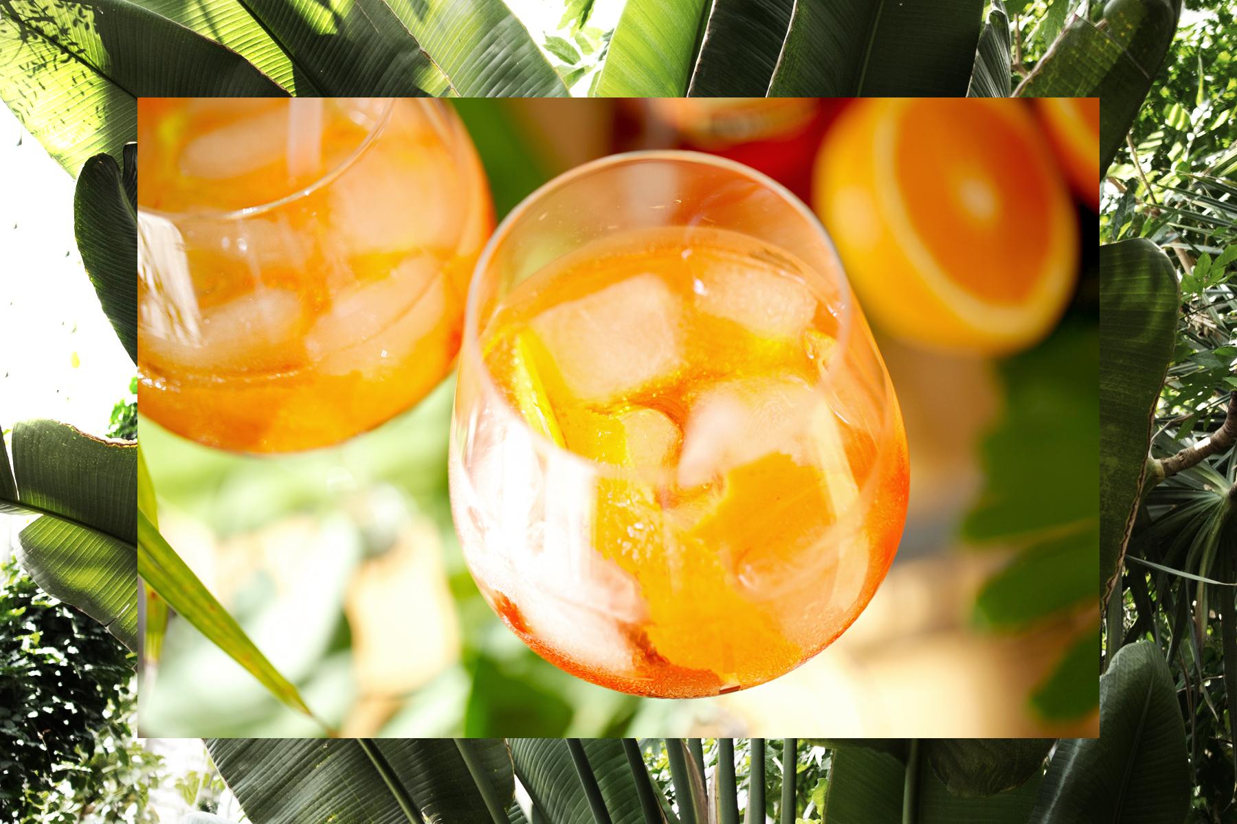 aperol spritz summer aperitif drink cocktail recipe personal urban jungle garden palm tree holiday feeling white crochet dress hm gucci belt saint laurent wedges dionysus ricarda schernus fashionblogger 1